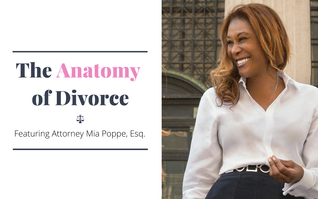 Video Series: The Anatomy of Divorce